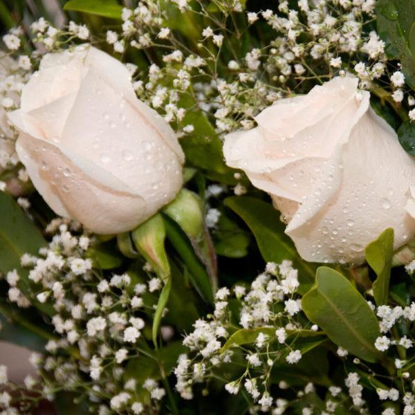 Arreglo Lady de 12 Rosas - Envío de flores y plantas, Florería La Fleur, Montevideo, Uruguay.