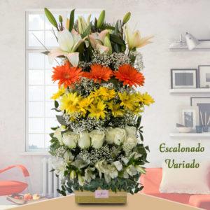 Arreglo floral Escalonado Variado - Envío de flores y plantas, Florería La Fleur, Montevideo, Uruguay.