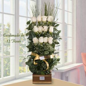 Escalonado de 12 Rosas - Envío de flores y plantas, Florería La Fleur, Montevideo, Uruguay.