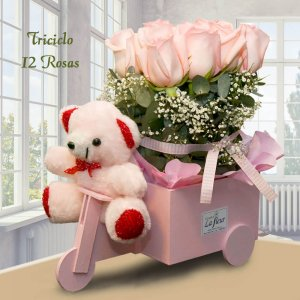 Triciclo con 12 Rosas y Peluche - Envío de flores y plantas, Florería La Fleur, Montevideo, Uruguay.