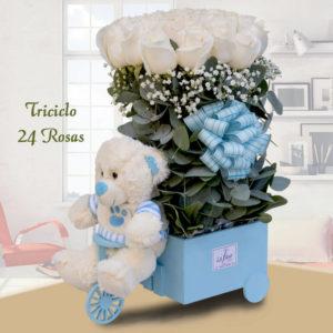 Arreglo floral Triciclo con 24 Rosas y Peluche - Envío de flores y plantas, Florería La Fleur, Montevideo, Uruguay.